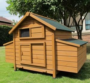 Pets Imperial Hühnerhaus Für 6 Hühner Marlboroughsavoy